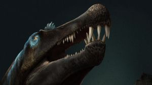 Spinosaurus fossil discovery rewrites history of swimming dinosaurs
