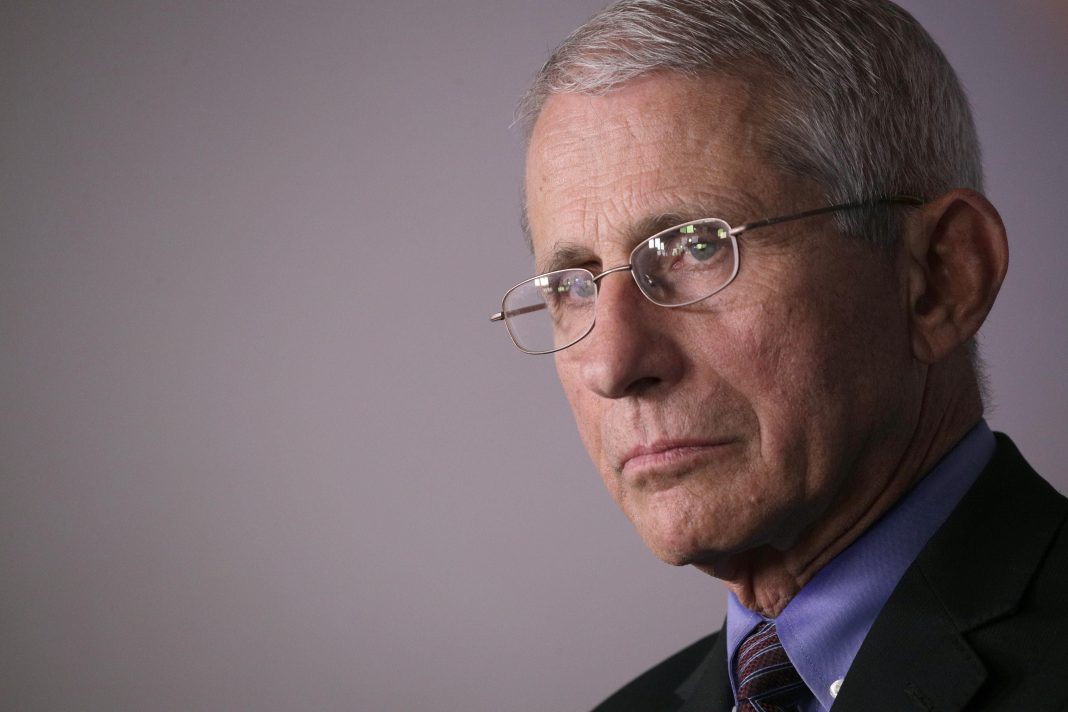 Report: Fauci To Tell Senate 'Needless Suffering And Death' Will Result From Reopening Too Quickly