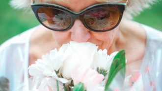 The way the coronavirus messes with smell hints at how it affects the brain
