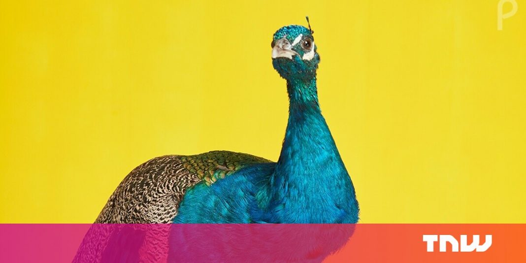NBC's Peacock streaming service has launched — here's how to get started