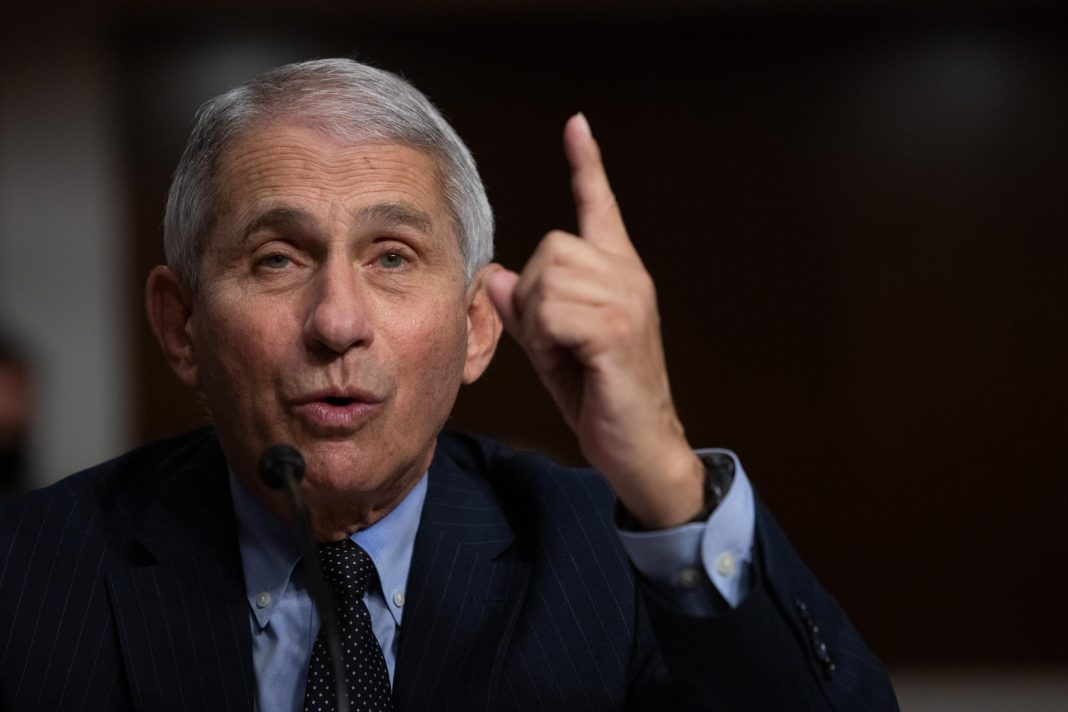 Fauci Attacks Herd Immunity Declaration Embraced By White House As 'Total Nonsense'