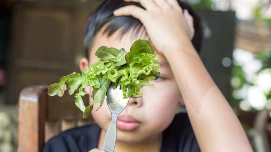 Stop Calling Kids 'Picky Eaters'