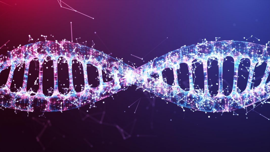 Scientists Use DNA To Store Digital Data