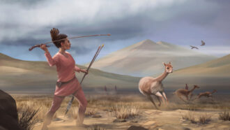 Female big-game hunters may have been surprisingly common in the ancient Americas