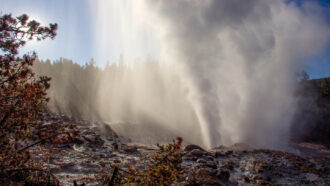 Reawakened Yellowstone geyser isn't a sign of imminent explosion