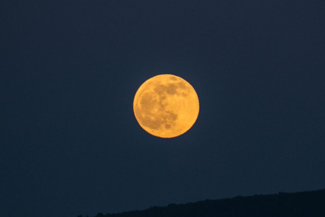 A 'Wolf Moon,' A 'Dog Star' And A 'Great Winter Loop:' What You Can See In The Night Sky This Week