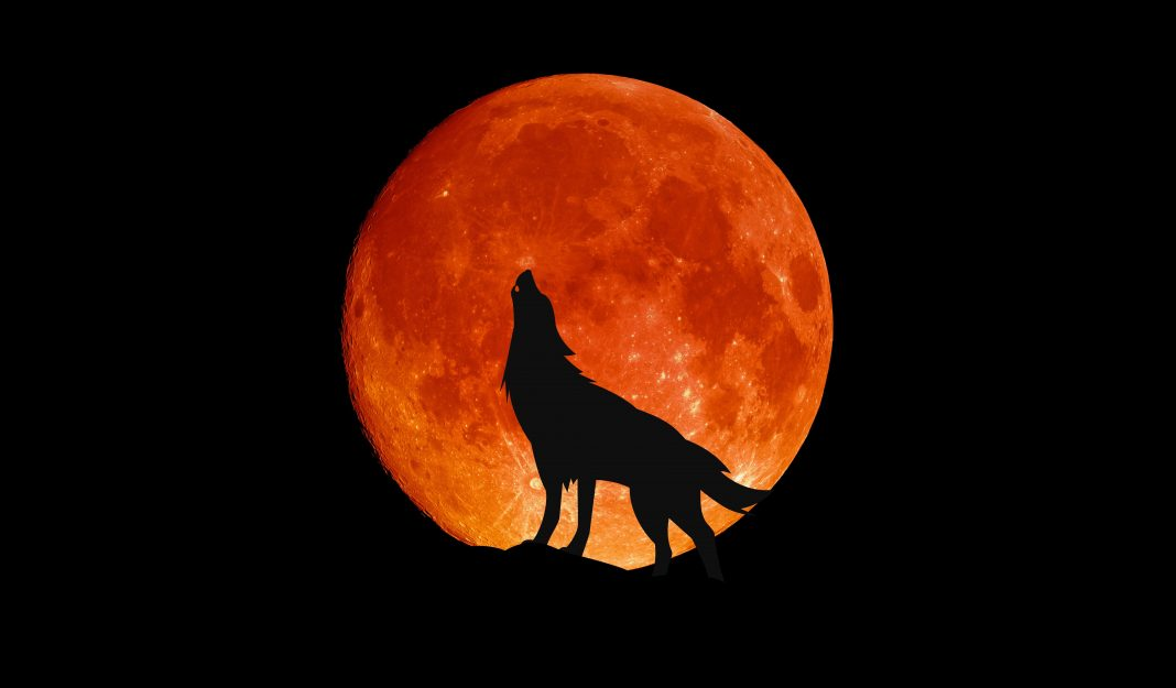 North America Will Get A 'Perfect' View Of This Week's Full 'Wolf Moon.' Here's When You Can See It