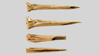 The oldest known tattoo tools were found at an ancient Tennessee site