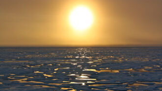 How AI can help forecast how much Arctic sea ice will shrink
